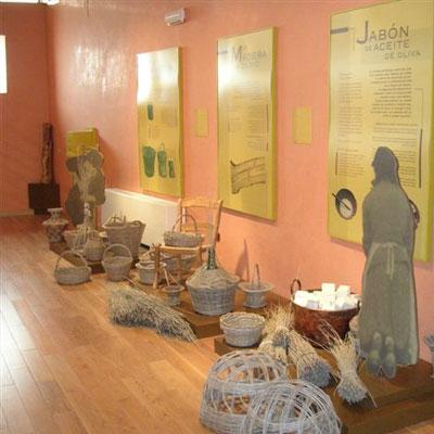 museo_olivar2