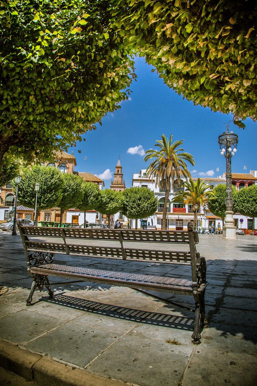 plaza-s-fernando-1